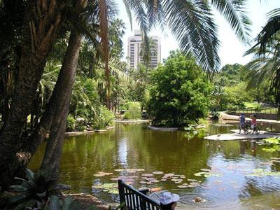 City Botanic Gardens, Brisbane image