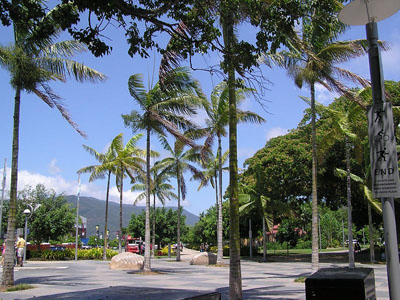 Esplanade, Cairns, Queensland image