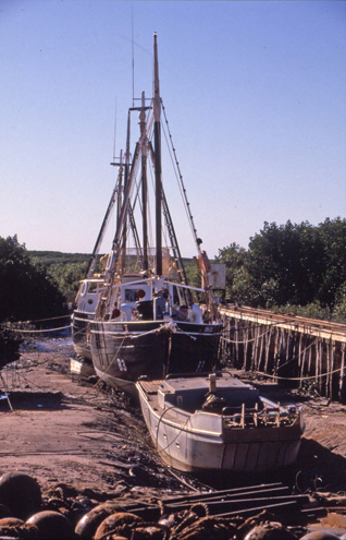 Old Pearling Luggers, Broome (image)