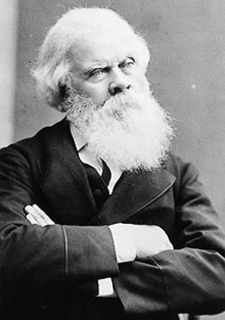 Sir Henry Parkes image